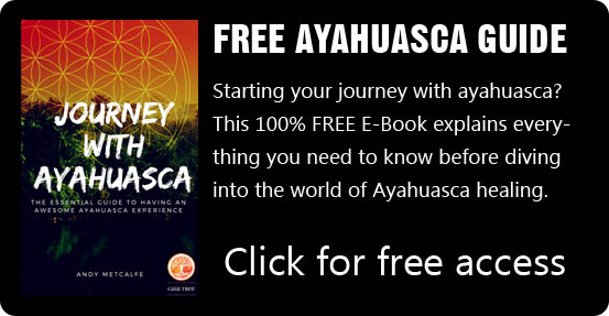 ebookad - Ayahuasca Retreat Safety