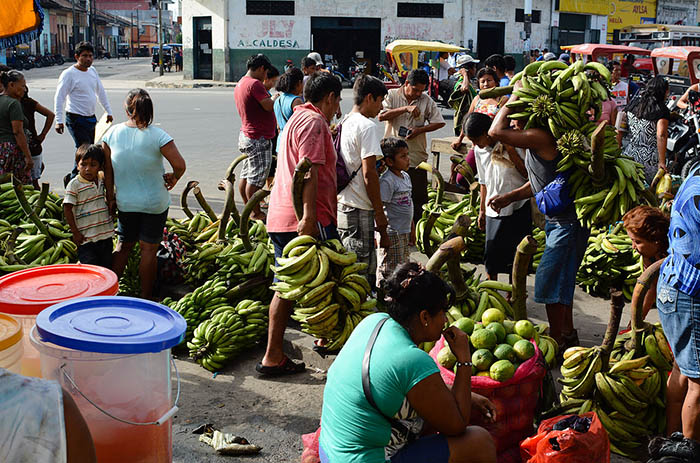 Iquitos fruit market with bananas