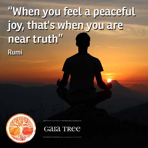 Spiritual Practice 1 - Ayahuasca Integration - Adjusting to Life After Your Ayahuasca Retreat