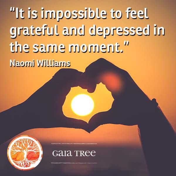 gratitude2 - Ayahuasca Integration - Adjusting to Life After Your Ayahuasca Retreat