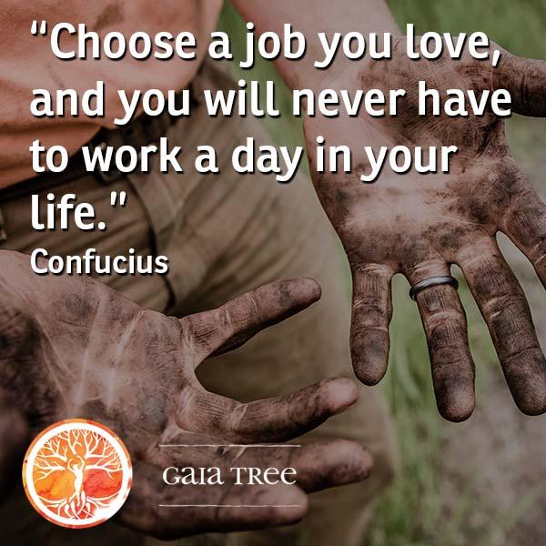 job1 - Ayahuasca Integration - Adjusting to Life After Your Ayahuasca Retreat